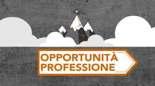 Opportunità Professione
